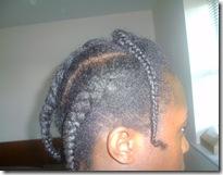 Braids Side