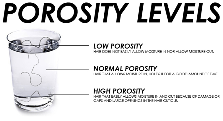 Getting To Know Your Hair–Understanding Porosity | Nadia's Notes