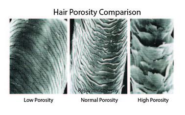 Porous Hair Natural Treatment