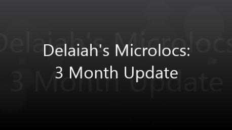 Delaiah's Microlocs - 3 Month Update