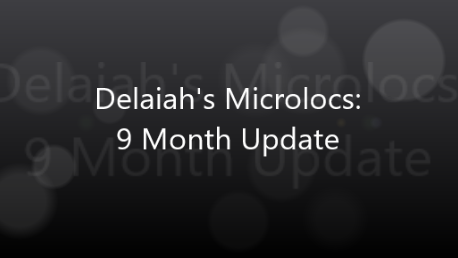 Delaiah's Microlocs - 9 Month Update